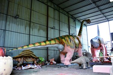 ZiGong HaiChuan Dinosaur Landscape Science and Technology Co., LTD.
