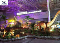 Indoor Shopping Mall Realistic Dinosaur Models Decoration / Full Size Animal Models