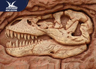 Amusement Park Decorative Dinosaur Fossil Replicas Fiberglass Specimen Resin Material